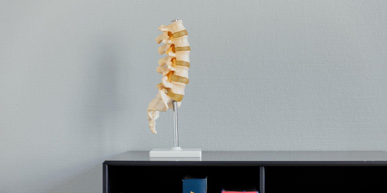lb spine on books